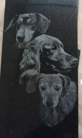 Three Dogs Laser Etching